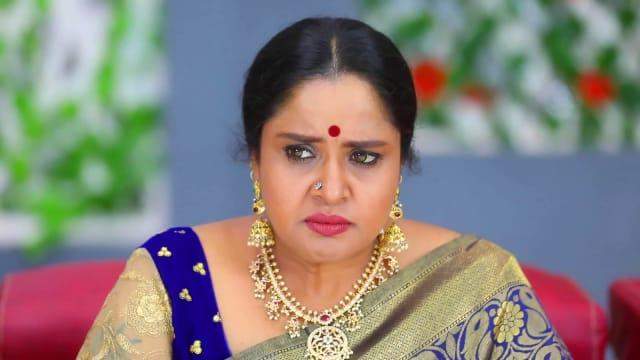 Watch Aranmanai Kili TV Serial Episode 168 - Meenakshi Gets Infuriated Full  Episode on Hotstar