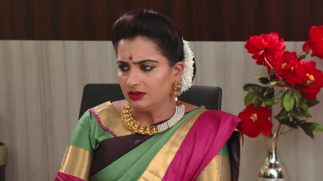 Veera Episode 738