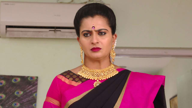 Watch Karthika Deepam TV Serial Episode 530 - Soundarya Meets Mounitha Full  Episode on Hotstar