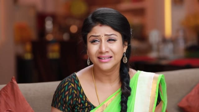 Watch Raja Rani TV Serial Episode 534 - The Family Questions Semba Full  Episode on Hotstar