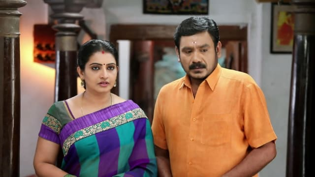 Watch Pandian Stores TV Serial Episode 167 - Dhanam, Moorthy in a Fix Full  Episode on Hotstar