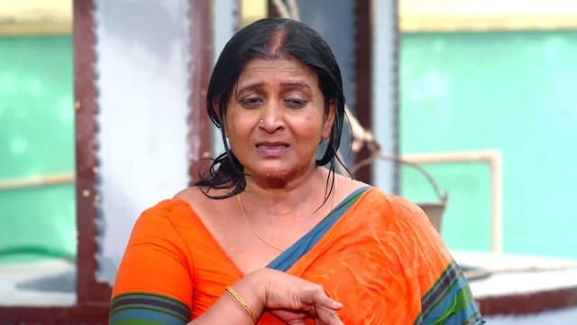 Watch Vadinamma TV Serial Episode 68 - Rajeshwari's Plight Full Episode on  Hotstar