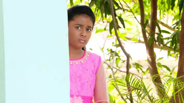 Watch Karthika Deepam TV Serial Episode 459 - Hima Hides