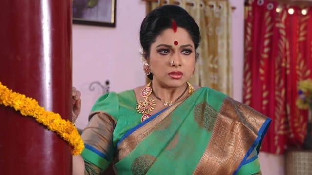 Watch Savitrammagari Abbayi TV Serial Episode 37 - A Shock for Savitri Full  Episode on Hotstar