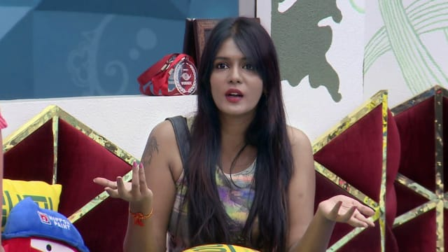 Watch Bigg Boss TV Serial Episode 24 - Day 23 in the House Full Episode on  Hotstar