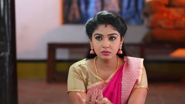 Tamildh Pandian Sto Vijay Tv Serial   Haymedia