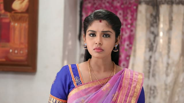 Watch Pandian Stores TV Serial Episode 208 - Meena Confronts Jeeva Full  Episode on Hotstar