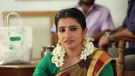 Pandian Stores Serial Full Episodes, Watch Pandian Stores TV