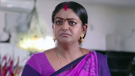 Watch Karthika Deepam TV Serial Episode 487 - Vihari Resolves to