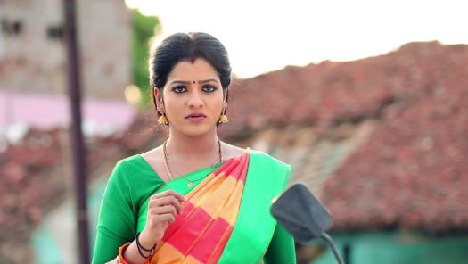 Pandian Stores Serial Full Episodes, Watch Pandian Stores TV Show