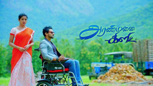 Watch Aranmanai Kili TV Serial Episode 211 - Jaanu Leaves for the