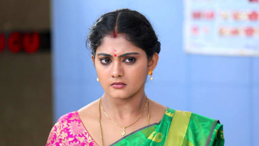 Ponnukku Thanga Manasu Serial Full Episodes, Watch Ponnukku