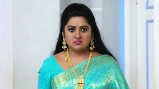 z tamil tv serials download