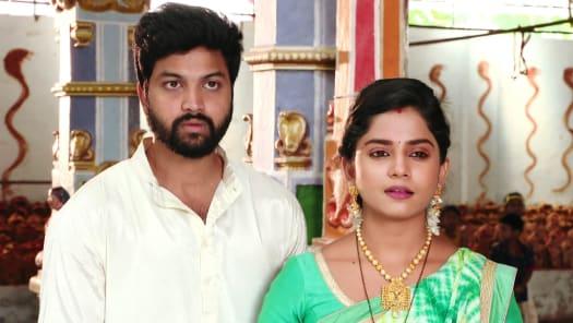 Krishnaveni Serial Full Episodes, Watch Krishnaveni TV Show