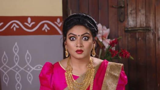 Watch Agni Sakshi TV Serial Episode 452 - Gowri's Stern Decision