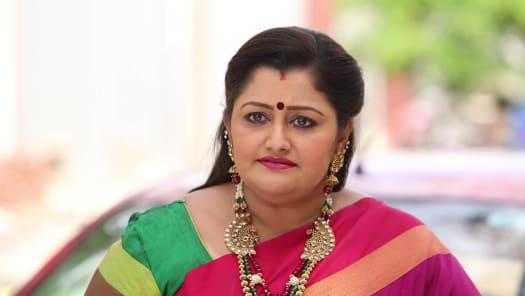 Watch Pagal Nilavu TV Serial Episode 510 - Sneha, Arjun Celebrate