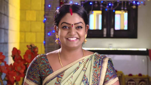 Watch Karthika Deepam TV Serial Episode 532 - Soundarya Reveals The