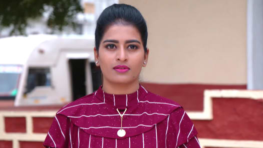 Watch Kathalo Rajakumari TV Serial Episode 316 - Avani Faces