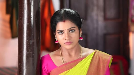 Watch Pandian Stores TV Serial Episode 207 - Mulla's Advice to Kathir Full  Episode on Hotstar