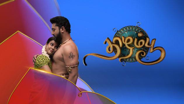 18-11-2019 Thaazhampoo – Vijay Tv Serial