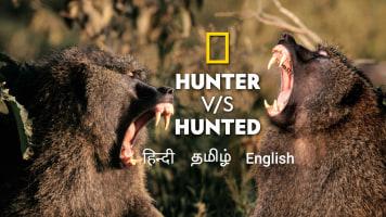 Hunter vs. Hunted