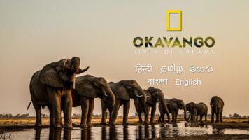 Okavango: River Of Dreams: Divine Journeys