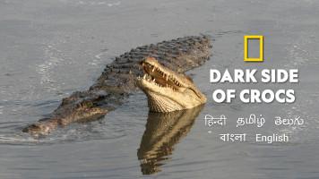Dark Side of Crocs