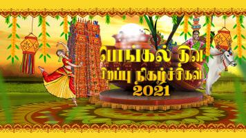 Vijay Pongal Specials