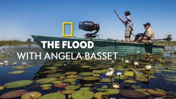 The Flood with Angela Basset