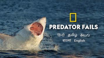 Predator Fails
