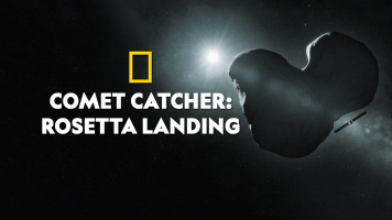 Comet Catcher: Rosetta Landing