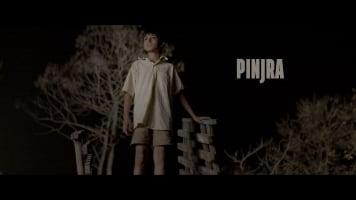 Pinjra