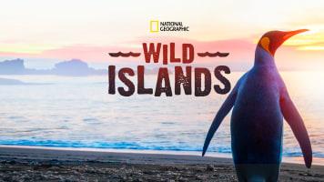 Wild Islands (2016)