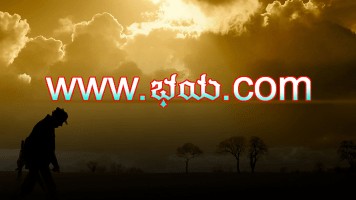 www.Bhaya.com